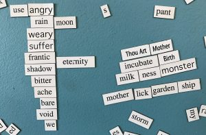 "Magnetic poetry words placed together to make two poems. One says ""use angry / rain moon / weary / suffer / frantic eternity / shadow / bitter/ ache / bare / void / we"" and the other says Thou Art Mother / incubate Birth / milkness monster / mother lick garden ship."""