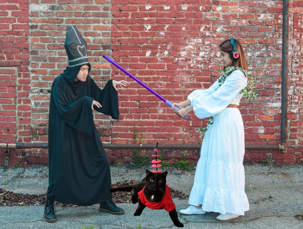 """Image 4: """"Star Wars cosplayers posing for a Halloween photo with their cat"""""""